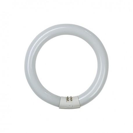 Tubo fluorescente circular 22 w.