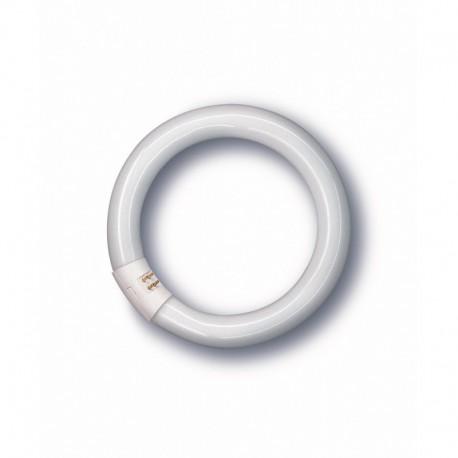 Tubo circular 40 w.